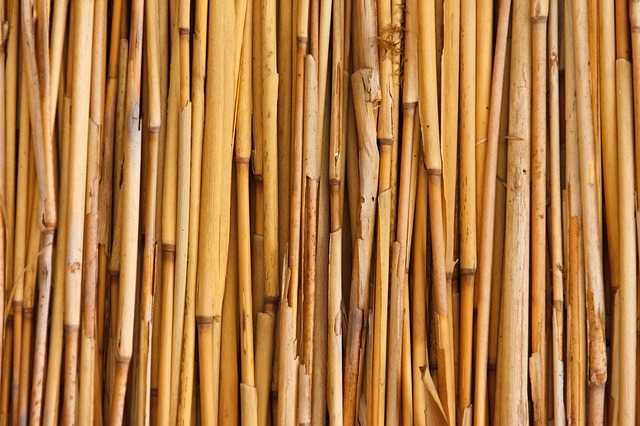 bamboe rijen vloer