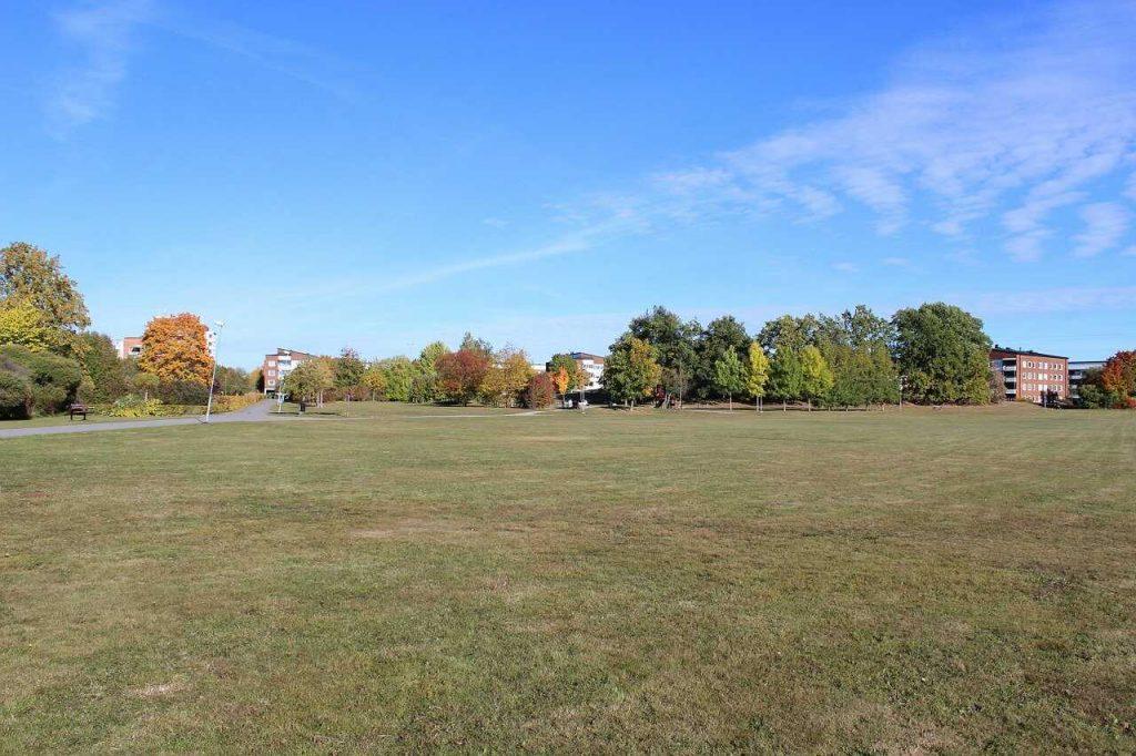 grasveld groen bebouwde kom dorp park recreatie