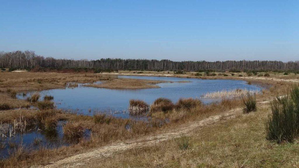 natuur water bos brabant