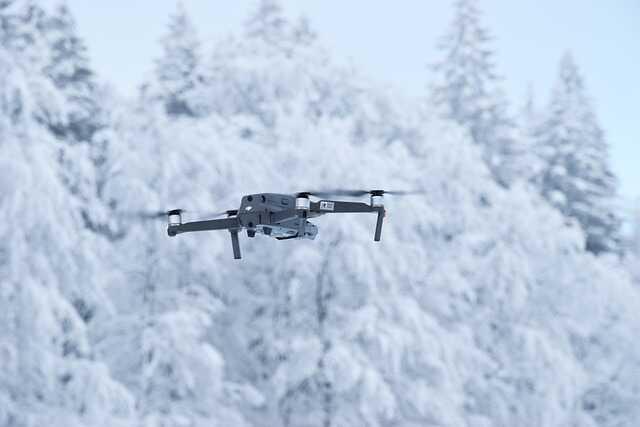 drone in sneeuw vliegen bos koud