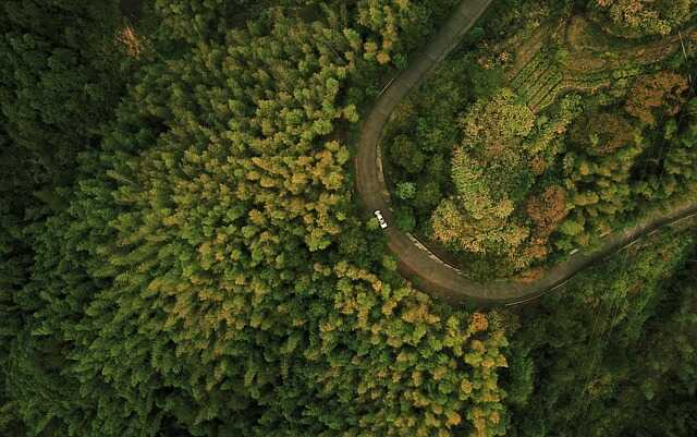 drone vogelperspectief foto bos weg