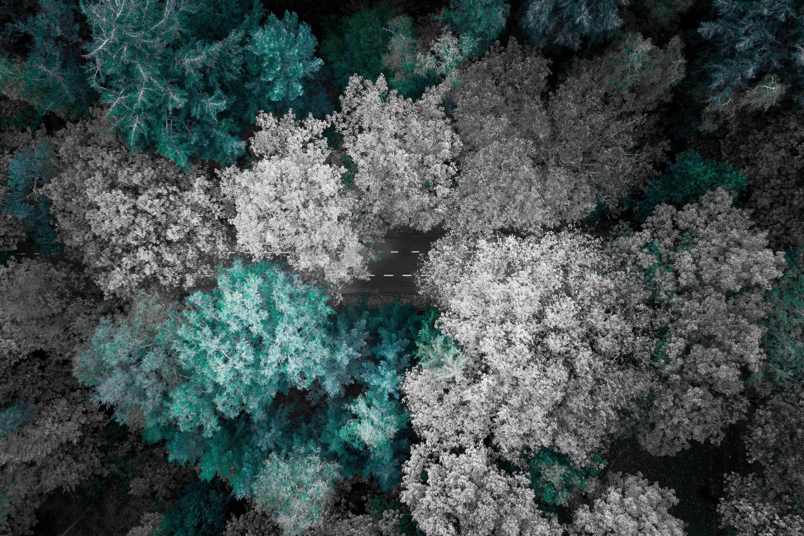 luchtfoto's laten maken